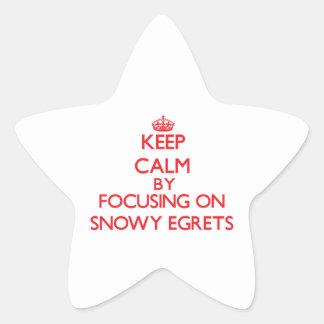Keep calm by focusing on Snowy Egrets Star Sticker