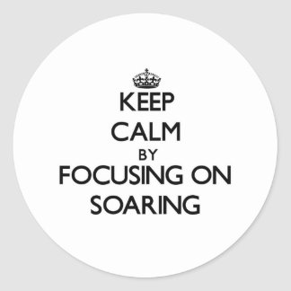 Keep Calm by focusing on Soaring Classic Round Sticker