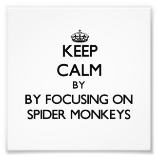 Keep calm by focusing on Spider Monkeys Photo Print