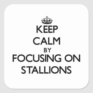 Keep Calm by focusing on Stallions Square Sticker