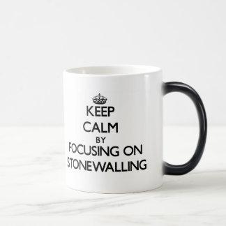 Keep Calm by focusing on Stonewalling 11 Oz Magic Heat Color-Changing Coffee Mug