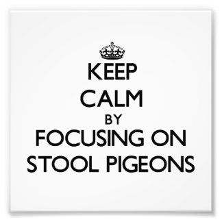 Keep Calm by focusing on Stool Pigeons Photo Art