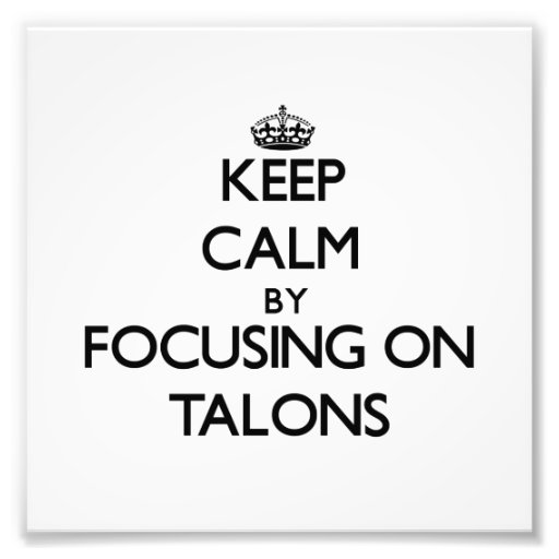 Keep Calm by focusing on Talons Photographic Print