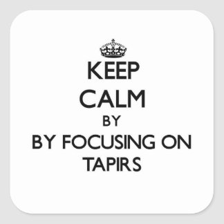 Keep calm by focusing on Tapirs Stickers