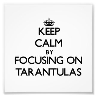 Keep Calm by focusing on Tarantulas Art Photo