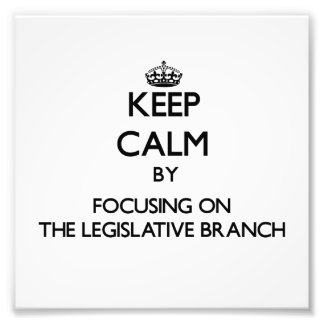 Keep Calm by focusing on The Legislative Branch Photo