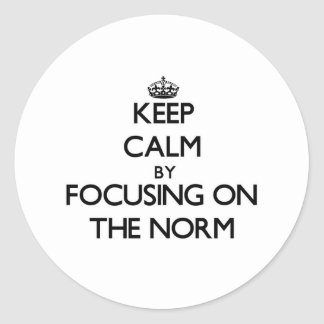 Keep Calm by focusing on The Norm Round Sticker