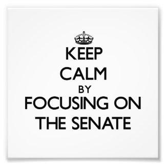 Keep Calm by focusing on The Senate Photo