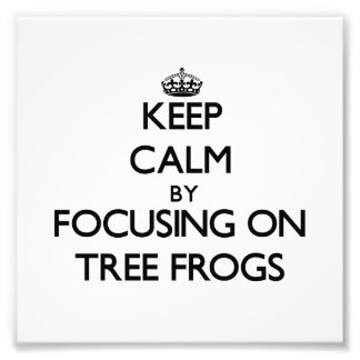 Keep Calm by focusing on Tree Frogs Art Photo