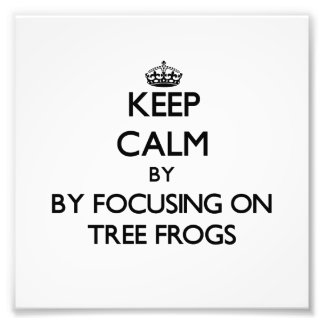 Keep calm by focusing on Tree Frogs Photographic Print