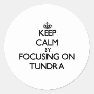 Keep Calm by focusing on Tundra Round Sticker