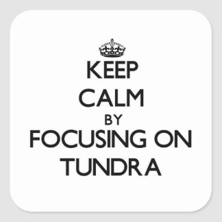 Keep Calm by focusing on Tundra Square Stickers