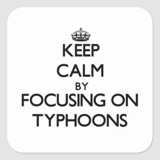 Keep Calm by focusing on Typhoons Square Sticker
