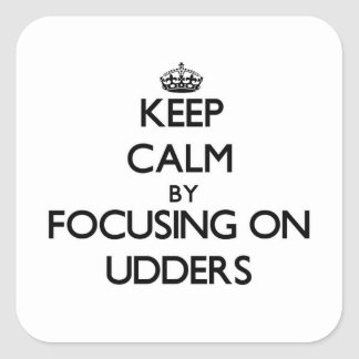 Keep Calm by focusing on Udders Sticker