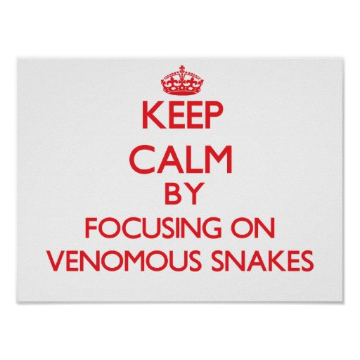 Keep calm by focusing on Venomous Snakes Poster