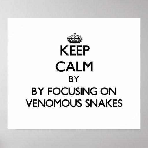 Keep calm by focusing on Venomous Snakes Print
