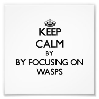 Keep calm by focusing on Wasps Art Photo