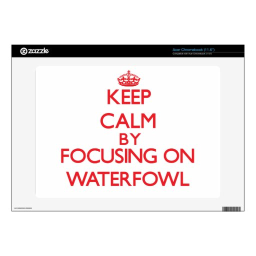 Keep calm by focusing on Waterfowl Decal For Acer Chromebook