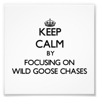 Keep Calm by focusing on Wild Goose Chases Photo