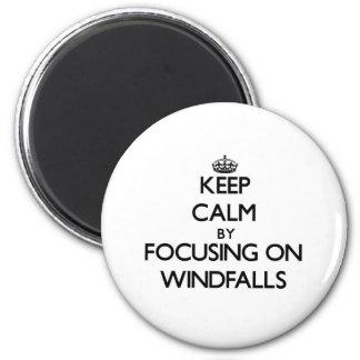 Keep Calm by focusing on Windfalls Fridge Magnet