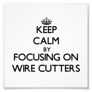 Keep Calm by focusing on Wire Cutters Art Photo