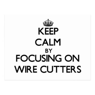 Keep Calm by focusing on Wire Cutters Postcards