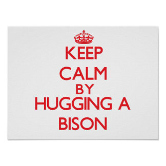 Keep calm by hugging a Bison Print