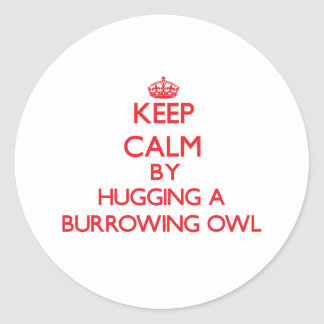 Keep calm by hugging a Burrowing Owl Round Stickers