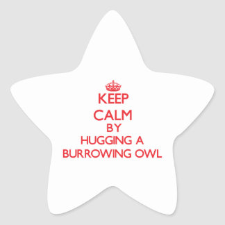 Keep calm by hugging a Burrowing Owl Star Stickers