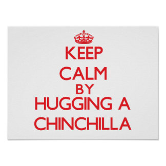 Keep calm by hugging a Chinchilla Poster