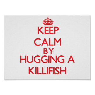 Keep calm by hugging a Killifish Posters