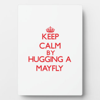 Keep calm by hugging a Mayfly Display Plaque