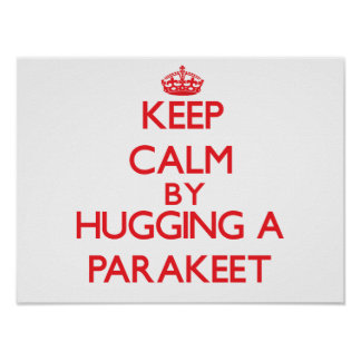 how to keep a parakeet