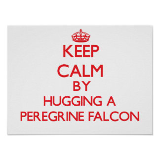 Keep calm by hugging a Peregrine Falcon Poster