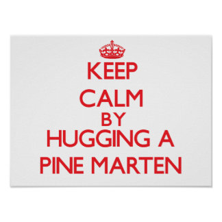 Keep calm by hugging a Pine Marten Posters