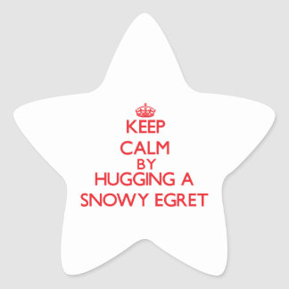 Keep calm by hugging a Snowy Egret Star Stickers