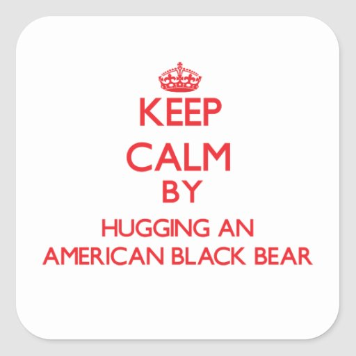 Keep calm by hugging an American Black Bear Square Stickers