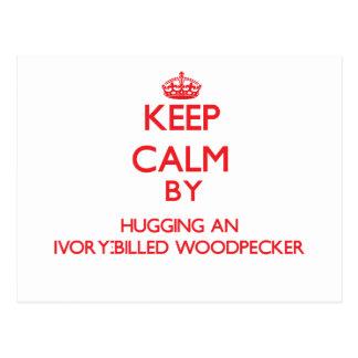 Keep calm by hugging an Ivory-Billed Woodpecker Postcard