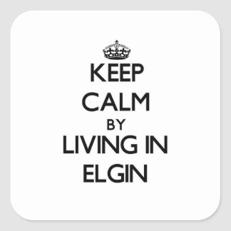 Keep Calm by Living in Elgin Sticker