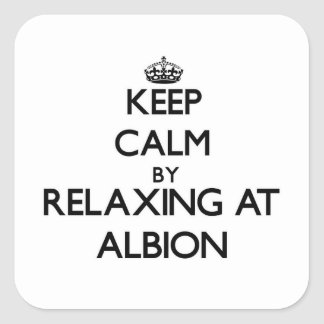 Keep calm by relaxing at Albion Illinois Square Sticker