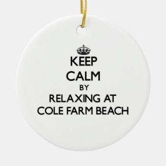 Keep calm by relaxing at Cole Farm Beach Rhode Isl Ornaments
