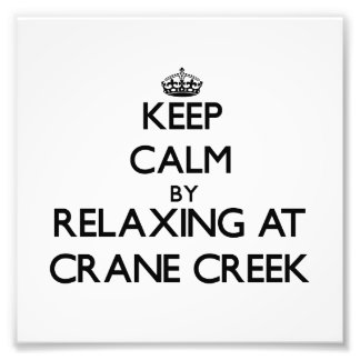 Keep calm by relaxing at Crane Creek Ohio Photo Print
