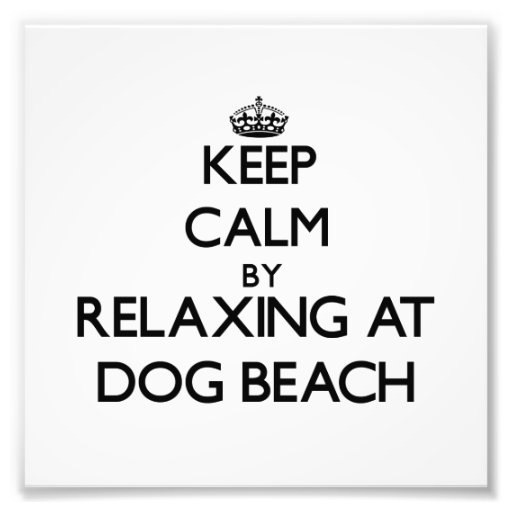 Keep calm by relaxing at Dog Beach Florida Photographic Print