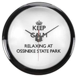 Keep calm by relaxing at Ossineke State Park Michi Aquavista Clock