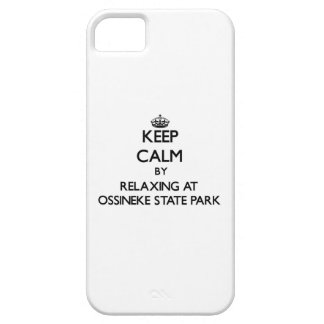 Keep calm by relaxing at Ossineke State Park Michi iPhone 5 Case