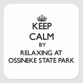 Keep calm by relaxing at Ossineke State Park Michi Square Sticker
