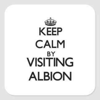 Keep calm by visiting Albion Illinois Square Sticker