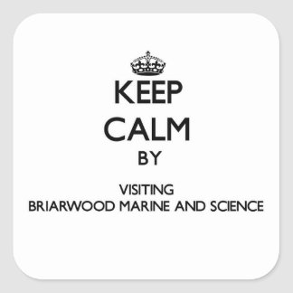 Keep calm by visiting Briarwood Marine And Science Square Sticker