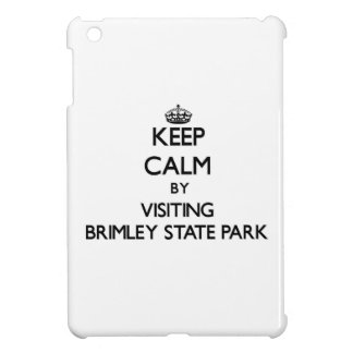 Keep calm by visiting Brimley State Park Michigan iPad Mini Cover