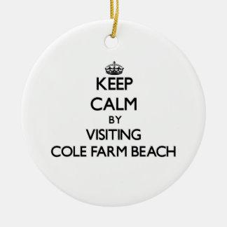 Keep calm by visiting Cole Farm Beach Rhode Island Ornaments
